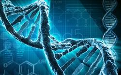Đây là 8 đột biến gen có thực cho bạn khả năng đặc biệt như một siêu nhân