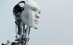 Nhờ tính xác suất, trí tuệ nhân tạo nay có thể học hỏi nhanh hơn và yêu cầu ít dữ liệu hơn trước rất nhiều