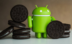 Dưới đây là các tính năng có thể sẽ xuất hiện trên hệ điều hành Android 8.0