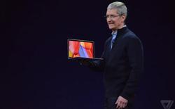 Apple thừa nhận Windows 10 phổ biến hơn macOS tới 4 lần
