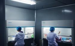 Tại sao trung tâm nghiên cứu gen lớn nhất thế giới của Trung Quốc lại nằm trong một nhà máy giày?