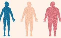 20 năm nghiên cứu đã kết luận: Chất béo không khiến cho bạn béo
