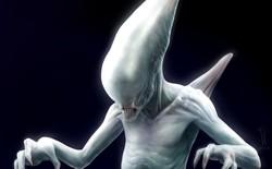 Alien: Covenant - Lộ diện chủng loài hoàn toàn mới trong trailer vừa ra mắt