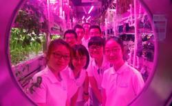 Zoom vào cuộc sống mô phỏng môi trường sao Hỏa của các sinh viên Trung Quốc: trồng lúa mì, khoai tây bằng phân bón của chính mình