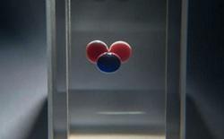 """Đây là """"Chit"""", ổ cứng 1-bit đầu tiên trên thế giới được tạo thành từ 3 giọt hóa chất"""