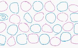 Bạn vẽ một vòng tròn theo cách nào? Liệu các nền văn hóa khác nhau có ảnh hưởng tới năng khiếu tự nhiên này của con người?