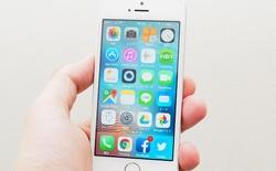 """Apple âm thầm phát triển dự án giúp thu thập dữ liệu y tế của người dùng, """"một iTunes cho y tế"""""""