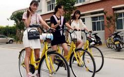 Lại thêm startup cho thuê xe đạp lụn bại vì nạn ăn cắp: sau 4 tháng, 1.000 xe chỉ còn lại vài chục