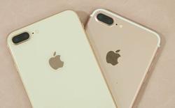 Đặt iPhone 8 Plus Gold cạnh iPhone 7 Plus Rose Gold mới thấy đây là sự lựa chọn hoàn hảo dành cho chị em khi Apple loại bỏ màu vàng hồng