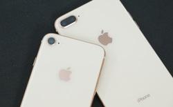 iPhone 8 sẽ chính thức có mặt tại Việt Nam vào ngày 10/11
