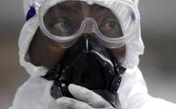 Sau Ebola và Zika, đại dịch bệnh tiếp theo có thể đã bắt đầu mà chúng ta chưa hề biết