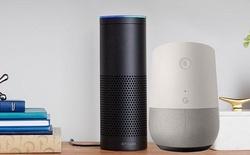 """Google và Amazon đang nghiên cứu tìm cách """"hồi sinh"""" điện thoại bàn"""