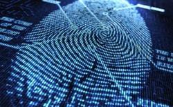 Các nhà nghiên cứu tìm ra cách quét vân tay trên màn OLED, chưa biết có kịp áp dụng cho iPhone 8 không