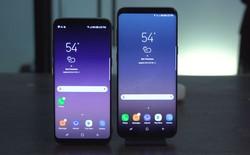 Chi tiết giá thành để sản xuất ra một chiếc Samsung Galaxy S8: cao hơn S7 tới 40 USD
