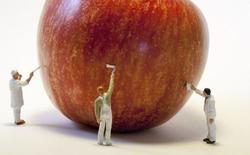 Công nghệ chế tạo ra Bitcoin và gian lận thực phẩm hóa ra lại có liên quan đến nhau