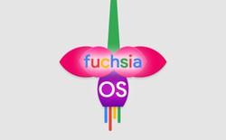 """Google: """"Hệ điều hành Fuchsia chưa thay thế được Android trong tương lai gần."""""""