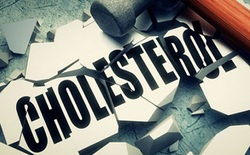 Đừng nghĩ cứ cholesterol chỉ toàn gây hại, chúng quan trọng đến mức cơ thể chúng ta phải tự sản xuất bù tới 80%