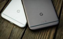 Google Pixel thế hệ tiếp theo sẽ do LG sản xuất, tên mã Taimen