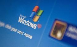 Windows XP vẫn là hệ điều hành phổ biến thứ ba trên thế giới, macOS không có chân trong tốp 3
