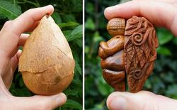 Chiêm ngưỡng những tuyệt tác nghệ thuật tạo ra từ hạt bơ, loại hạt tưởng chừng chỉ để vứt đi