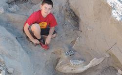 Đi chơi cùng gia đình, cậu bé vô tình ngã đập đầu vào hóa thạch 1,2 triệu năm tuổi
