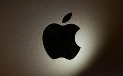 Vụ việc để lộ phiên bản GM của iOS 11 do chính nhân viên của Apple gây ra?