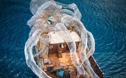 Thủy quái Kraken thép khổng lồ được đánh đắm cùng tàu thủy từ Thế chiến II nhằm xây dựng hệ sinh thái san hô mới