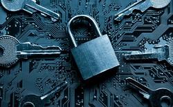 Xu hướng sử dụng container trong lập trình đang biến nó thành mỏ vàng cho các hacker