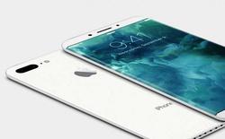 CEO LG Display cho biết Apple chưa thể chuyển hoàn toàn sang sử dụng màn hình OLED trong năm nay
