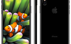 Thiếu nguồn cung màn hình OLED, chỉ có khoảng 4 triệu chiếc iPhone 8 sẵn sàng tại thời điểm giới thiệu