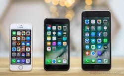 Tin đồn từ Foxconn: sẽ không có iPhone 8 trong năm nay
