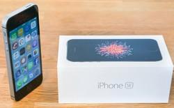 Apple bị cáo buộc điều chỉnh giá tại Nga, có thể nộp phạt 15% doanh thu tại đây