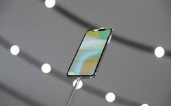 Báo cáo chi tiết của Bloomberg về vấn đề thiếu hụt iPhone X, đến mức Apple phải giảm độ chính xác của Face ID