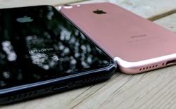 iPhone X lộ cấu hình trước giờ G: Chip A11 xung nhịp 2.5GHz, 3GB RAM và màn 5,8 inch