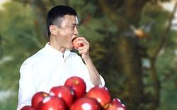 Alibaba sử dụng blockchain để ngăn chặn thực phẩm giả ở Trung Quốc
