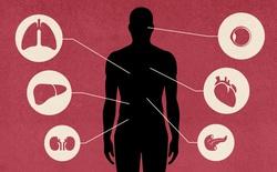 Công ty thịt lợn lớn nhất thế giới đang tìm cách tận dụng nội tạng động vật để cấy ghép sang người