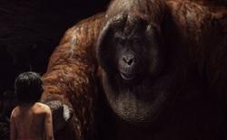 The Jungle Book vượt mặt Kubo and the Two Strings và Deepwater Horizon để giành giải phim có hiệu ứng hình ảnh xuất sắc nhất