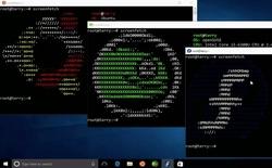 Đây là sự thực: Ubuntu, SUSE Linux và Fedora sắp lên Windows Store