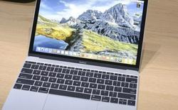 Apple sẽ cập nhật MacBook trong tháng Sáu để đáp trả Surface Laptop của Microsoft