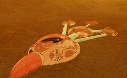 Các Tiểu Vương Quốc A Rập Thống Nhất chính thức bước vào cuộc đua đưa con người lên Sao Hỏa