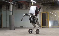 Alphabet chính thức đồng ý bán Boston Dynamics cho SoftBank