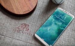 Morgan Stanley tăng gấp đôi dự báo số lượng màn hình OLED Apple đặt hàng cho iPhone mới