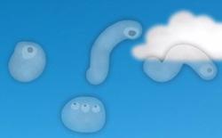 """Ghét những """"con sâu bơi"""" trong mắt bạn? Các nhà khoa học đã tìm ra cách xóa bỏ chúng"""