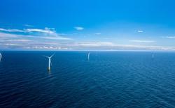 Scotland khánh thành trang trại năng lượng gió trên biển đầu tiên trên thế giới