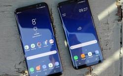 Samsung Galaxy S9 sẽ có phiên bản màu tím ngay từ khi ra mắt?