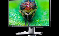 Màn hình 32 inch 8K của Dell xuất hiện, suýt chạm mốc giá 5000 USD