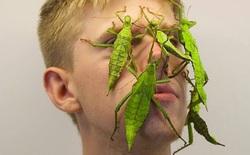 Chàng trai trở nên nổi tiếng trên Instagram chỉ nhờ cho... côn trùng lên mặt