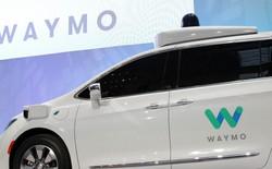 Một con chim bĩnh lên xe tự lái của Google, đố bạn biết chuyện gì xảy ra tiếp theo?