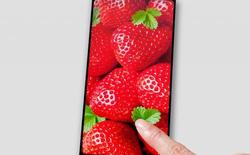 Japan Display trình làng màn hình 6 inch độ phân giải Quad HD tỷ lệ 18:9