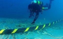 Đã sửa xong 1 nhánh cáp AAG, cáp Liên Á bắt đầu sửa từ ngày mai